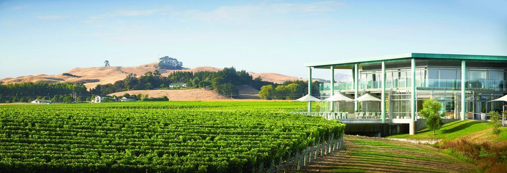 elephant-hill-winery-is-doing-free-shipping-and-a-special-code-for-all-m2-readers-te-awanga-sauvignon-blanc-block-m2magazine.co.nz-1024x351